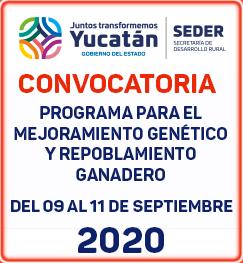 convocatoria Mejoramiento Genético Covid septiembre 2020
