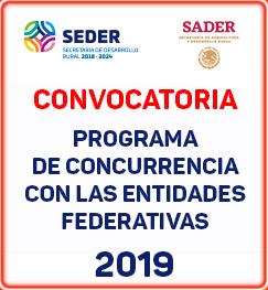 convocatoria concurrencia 2019