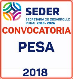 convocatoria Pesa 2018